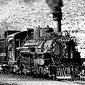 Locomotive Black And White Train Steam Engine by Jerry Cowart