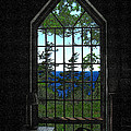 Lodge Window At The Clearing by David Blank