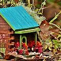 Log Cabin Birdhouse In Fall by VLee Watson