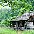 Log Cabin Fort New Salem by Thomas R Fletcher