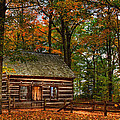 Log Cabin In Autumn Color by Richard Gregurich