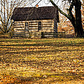 Log Cabin On A Hill by Imagery by Charly