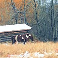 Log Cabin Pony by Roland Stanke