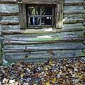Log Cabin Window And Fall Leaves by Rebecca Korpita
