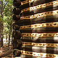 Log Corner by Lew Davis