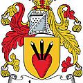 Logan Coat Of Arms Irish by Heraldry