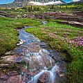 Logan Pass Creek by Inge Johnsson