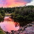 Lolo Hot Springs Creek by Robert Bales