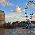 London Eye And Shell Building by Jeremy Hayden