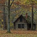 Lone Cabin by Valerie Brown