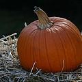 Lone Pumpkin by Denyse Duhaime