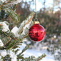 Lone Red Christmas Ball by Deborah A Andreas