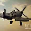 Lone Spitfire by J Biggadike
