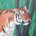 Lone Tiger by Tyrell Wade