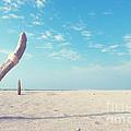 Lone Tree On Beach by Yew Kwang
