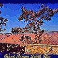 Lone Tree South Rim Poster by John Malone