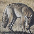 Lone Wolf by Michael Briere