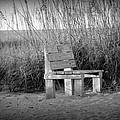 Lonely Beach Bench by Diana Berkofsky