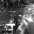 Lonely Bench 5 by Said Oladejo-lawal