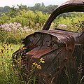 Lonely Car On The Prairie by Binsar Marseto