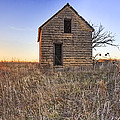 Lonely Homestead by Jill Van Doren Rolo