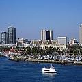 Long Beach by Athala Carole Bruckner