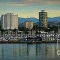 Long Beach Cityscape   by Susan Garren