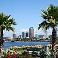 Long Beach Skyline by Bill Cobb