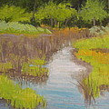 Long Creek Marsh by Robert Rohrich