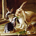 Long-eared Rabbits In A Cage Watched By A Cat by Horatio Henry Couldery