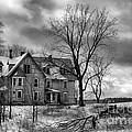 Long Hard Winter by Michele Steffey