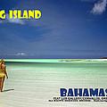 Long Island Bahamas by Michael Moore