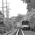 Long Island Railroad Pulling Into Station by John Telfer