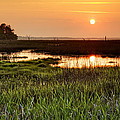 Long Marsh View by Phill Doherty
