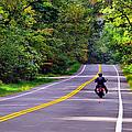 Long Ride by Art Dingo