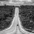 Long Road Ahead  8923bw  by Karen Celella