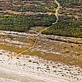 Long Road To The Coast Near Jekyll Island by Betsy Knapp