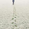 Long Walk Home by Roy Pedersen