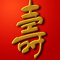 Longevity Chinese Calligraphy Gold On Red Background by David Gn
