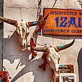 Longhorn Skulls On The Wall by Kathleen K Parker