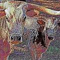 Longhorn Two by Douglas Settle