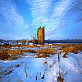 Longing For Some Solitary Company by Phil Koch