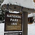 Longmire National Park Inn by Tikvah's Hope