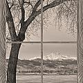 Longs Peak Winter Lake Barn Wood Picture Window Sepia View by James BO Insogna