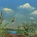Looking At Clouds by Rosellen Westerhoff