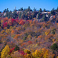 Looking At The Top Of Bald Mountain by David Patterson