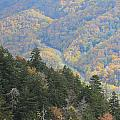 Looking Down On Autumn From The Top Of Smoky Mountains by Dan Sproul