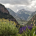 Looking Down On Ouray Colorado by Melany Sarafis