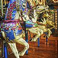 Dancing Horses by Debra Fedchin