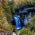 Looking Glass Falls #2 by Maurice Smith